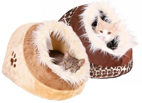 accessoire chaton