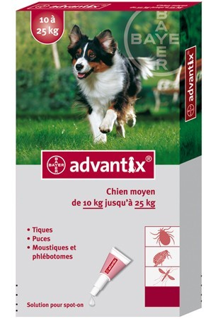 advantix chien moyen
