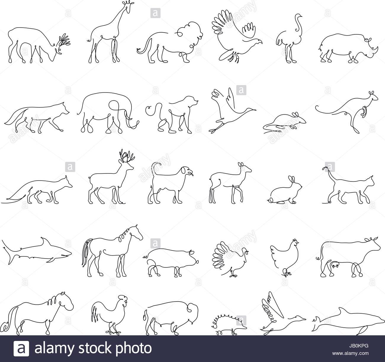 animaux ligne