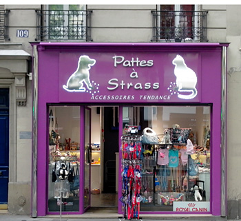 boutique chien