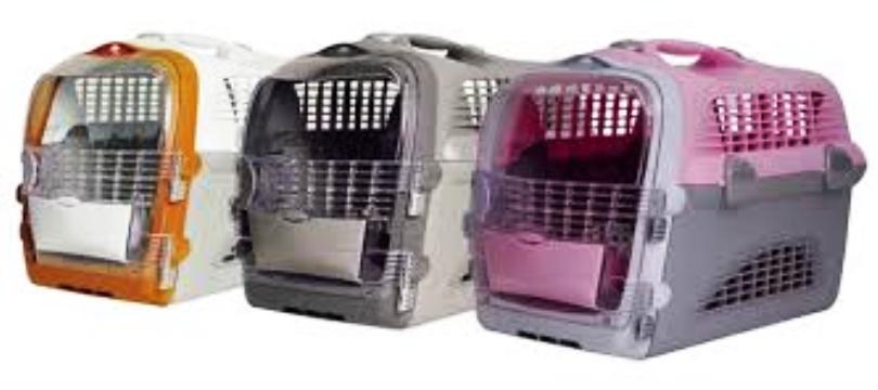 cage de transport grand chat