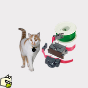 collier electrique pour chat