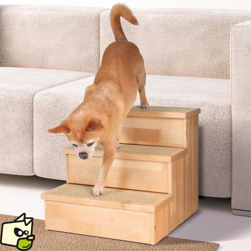 escalier pour chien