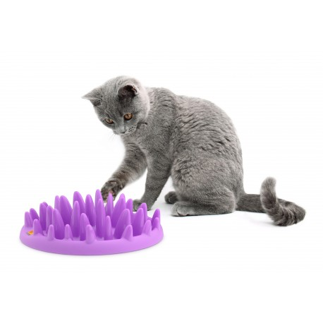 gamelle anti glouton pour chat