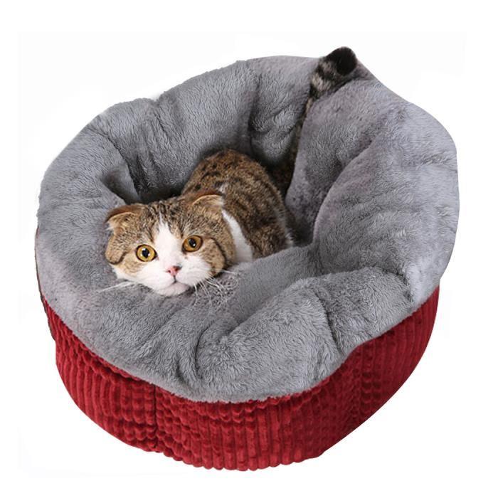 niche pour chat interieur