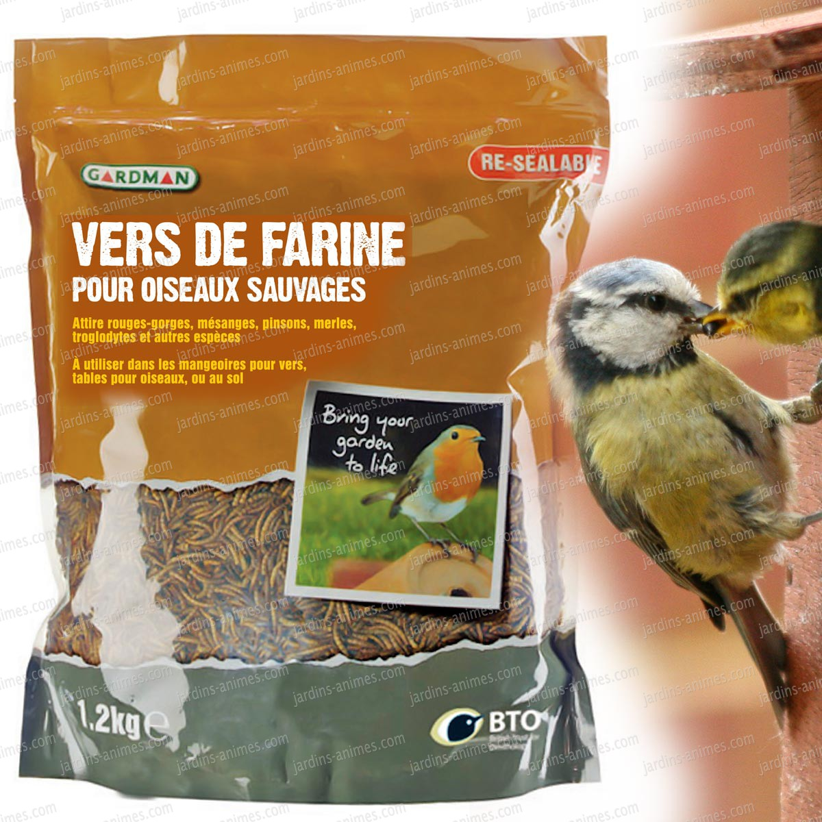 nourriture pour oiseaux